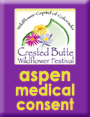 Hike to Aspen Medical Consent