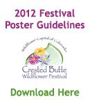2012 Festival Poster Guidelines PDF