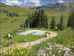 Mt. Crested Butte Wedding Garden