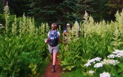 Wildflower Hikes, Walks and Events