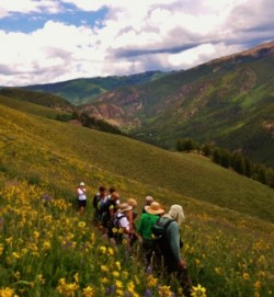 colorado wildflower retreat hike and camping adventure