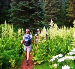 Crested Butte Guided Summer Tours