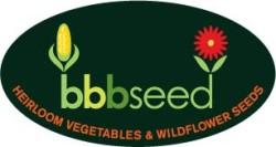 BBB oval logo